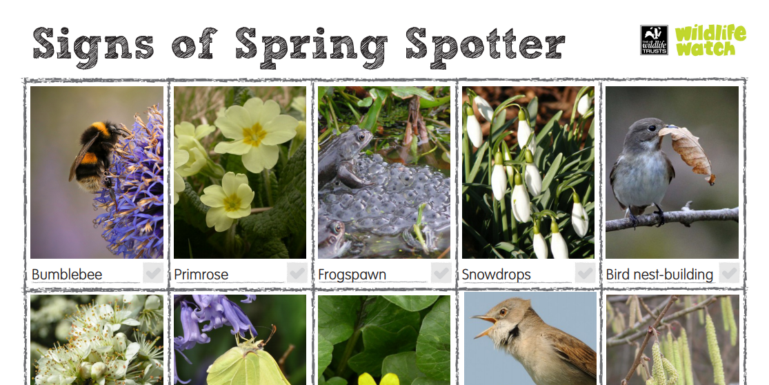 Resources like The Wildlife Trusts' Signs of Spring Spotter worksheet can keep you in touch with nature.