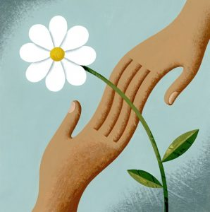 Illustration of two hands touching next to a white flower